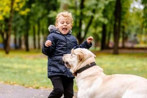 Frica de animale la copii: ce este de făcut?