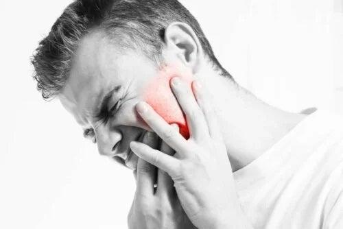 Bîrbat afectat de luxația articulației temporomandibulare