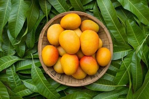 Fructe de mango coapte