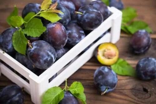 Ce tipuri și soiuri de prune există?