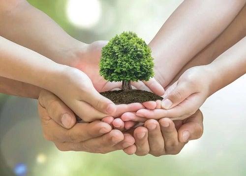 Cum să ai grijă de mediu la tine acasă