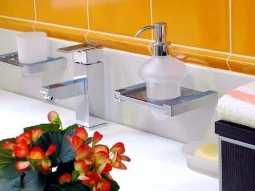 Begoniile sunt plante pentru baie