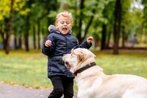 Copil căruia îi este frică de un cățel