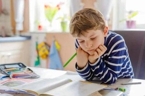 Idei pentru organizarea spațiului de studiu al copilului
