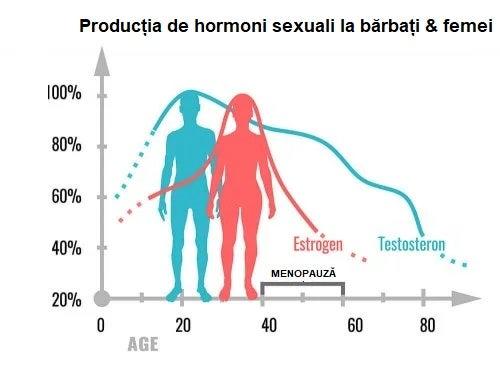 Care este funcția hormonilor sexuali?