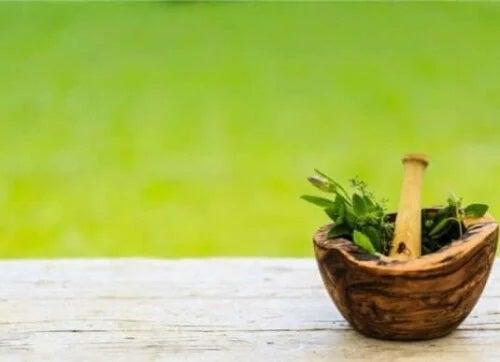 Mojar cu plante medicinale