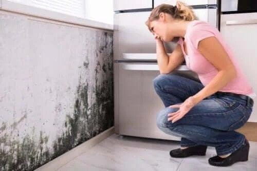 Probleme de sănătate cauzate de mucegai