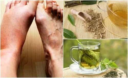 Ceaiuri pentru scăderea acidului uric