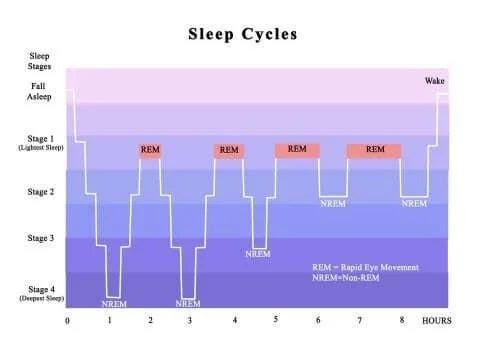 Cicluri normale de somn