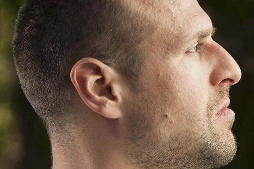 Formele nasului la bărbați