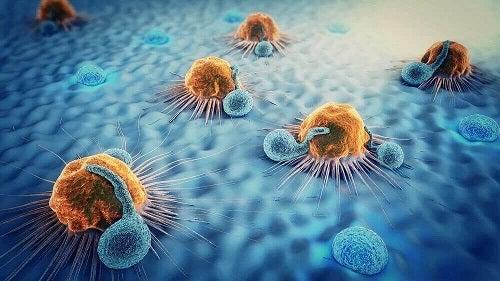 Metastaze produse de cancer