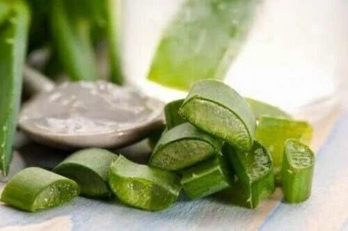 Aloe vera în remedii naturale pentru dermatita seboreică