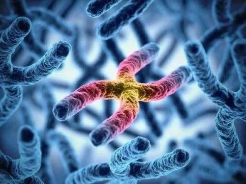 Cauzele discromatopsiei sunt genetice