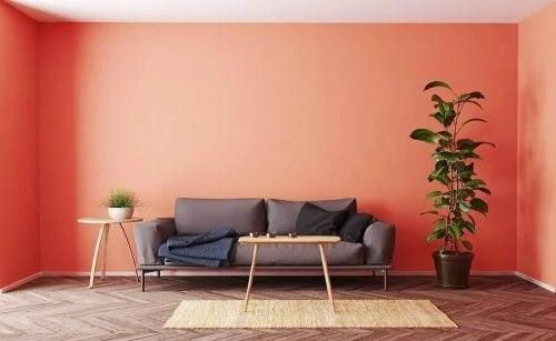 5 culori la modă pentru casă