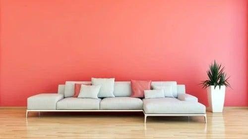 Culori la modă pentru casă