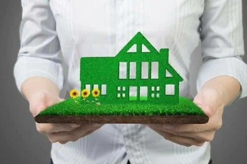Cum să ai o gospodărie sustenabilă