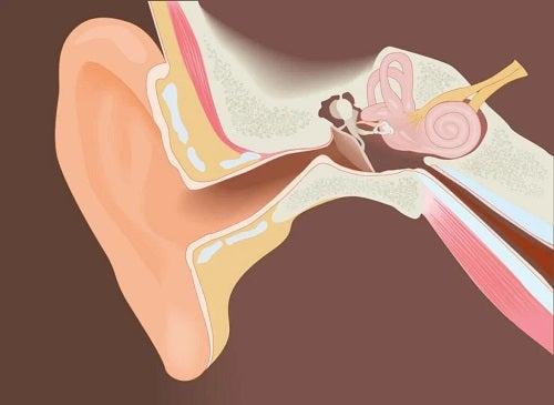 Îndepărtarea exostozelor canalului auditiv extern