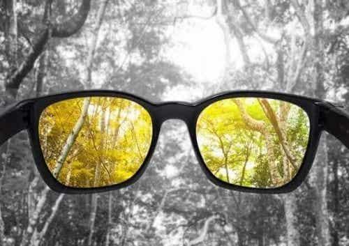 Cauzele discromatopsiei: când nu poți vedea culorile