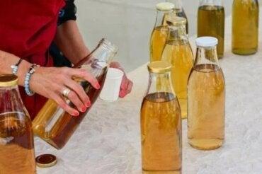 Caracteristici și riscuri ale ceaiului Kombucha