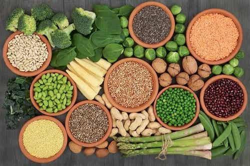 Principalele surse de proteine în dieta vegană