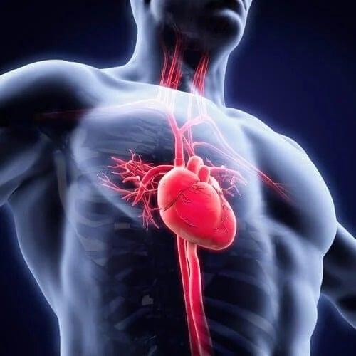 Astenia neurocrculatorie la oameni