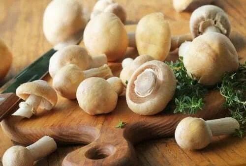 Ciuperci albe