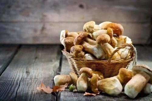 Ciupercile pot fi consumate în dieta pentru hiperuricemie