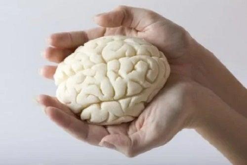 Creierul uman ținut în palme