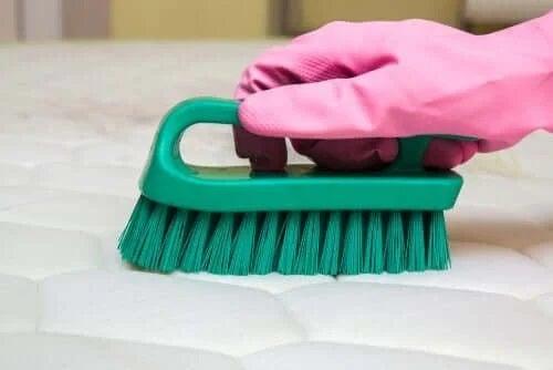 Curățenie cu mănuși de protecție