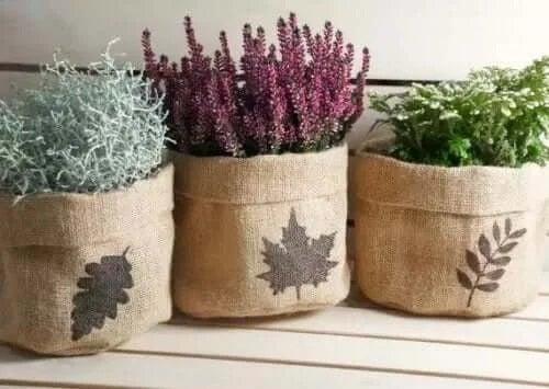 Plante în ghivece de pânză