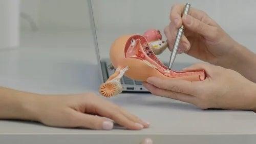 Cum este sexul după histerectomie?