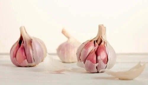 Căpățână de usturoi