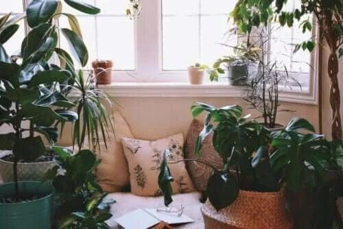 Idei pentru crearea unui colț de relaxare acasă