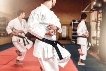 Diferențele dintre Karate și Taekwondo