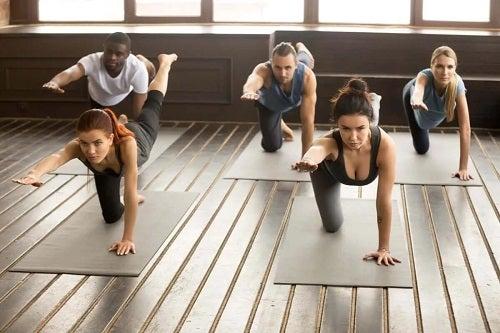 Persoane care practică exercițiul pasăre-câine