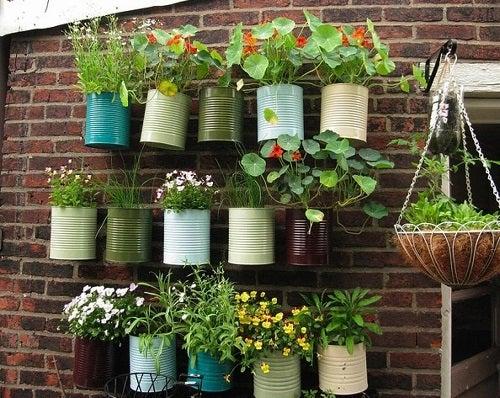 Cum să faci o jardinieră suspendată din materiale reciclate