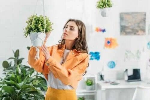 Cum să faci o jardinieră suspendată