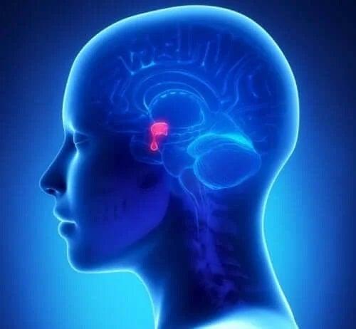 Tratamentul acromegaliei la oameni