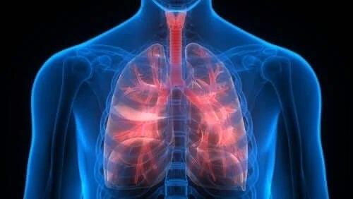 Nevoia de a folosi tratamentul tromboembolismului pulmonar