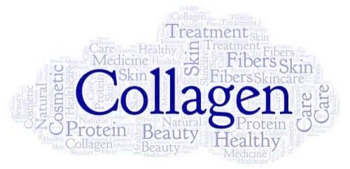 Sursele de colagen și importanța lor