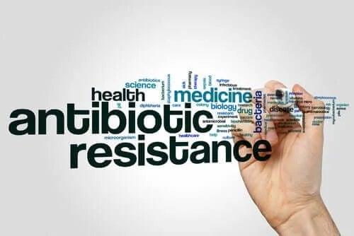 Cum apare rezistența la penicilină?