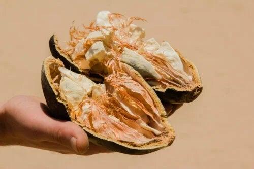 Beneficiile fructului de baobab sau pâinea maimuțelor