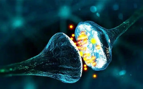 Neuroni care se conectează