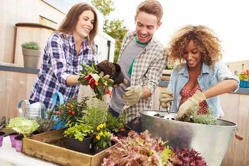 Prieteni în grădină