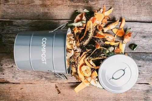 Găleată cu resturi pentru compost de casă