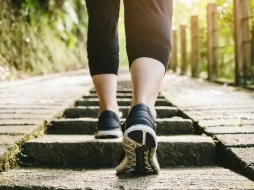 Antrenamentul cardiovascular cu impact redus