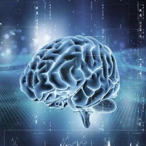 Creier iluminat în albastru