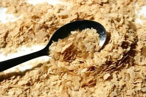 Drojdia nutritivă: nutrienți, beneficii și mod de utilizare