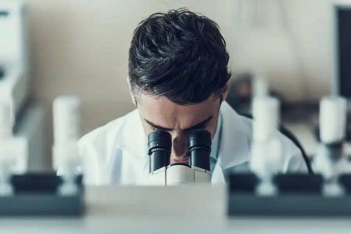 Specialist ce analizează beneficiile cărnii sintetice
