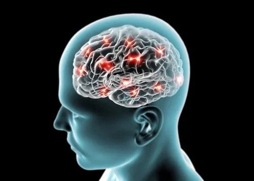 Activarea creierului după consumul de ceai verde